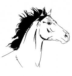 Arab horse head vector image vector image