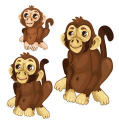 three cartoon monkey on white background vector image