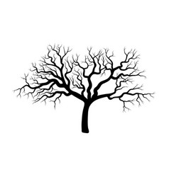 bare tree winter design isolated on white vector image