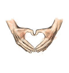 hands in shape heart from a splash of vector image