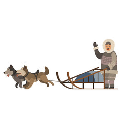 Inuit with husky dogs and sledges northern man vector