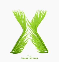 Letter x of juicy grass alphabet green x vector