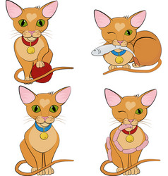 Set of cute ginger cats cartoon character vector