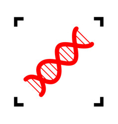 the dna sign red icon inside black focus vector image