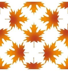 Autumn leaf maple seamless pattern vector image