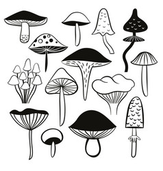 Black and white mushrooms vector