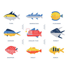 Collection of sea and river fish and lettering vector