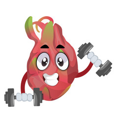 fruit lifting weights on white background on vector image