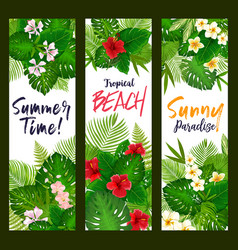 Summer time banners with tropical leaves vector