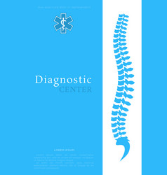 vertebral column all vertebrae cervical thoracic vector image
