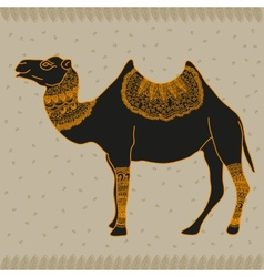 Camel Egypt vector image