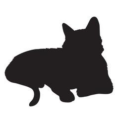 Cat Silhouette vector image
