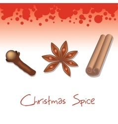 Christmas spice vector
