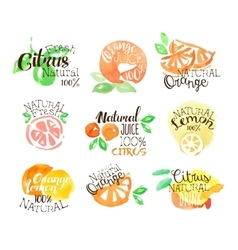 Fesh Citrus Juice Promo Signs Colorful Set vector