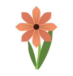 Gerbera flower spring ornament vector