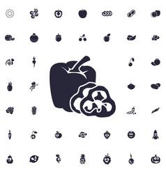 Pepper icon vector
