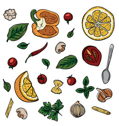 Vegetables herbs spices for italian pasta hand vector