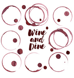 Wine ring set wine stains vector