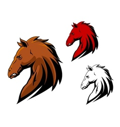 Angry stallion mascot vector image