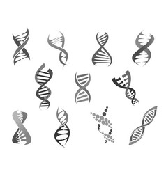 gene dna helix isolated icons set vector image vector image