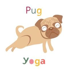 An of pug doing yoga vector image vector image