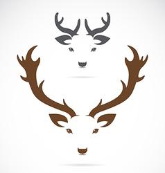 image of an deer head vector image vector image