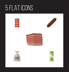 Flat icon food set of beef tomato packet vector