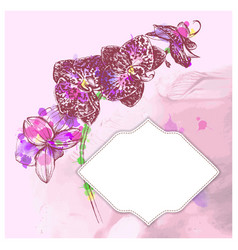 Frame with hand-drawing flower vector