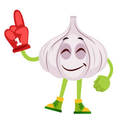 garlic with red glove on white background vector image