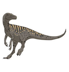 Herrerasaurus on white background vector