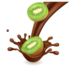kiwi fruit in chocolate splash vector image