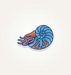Nautilus seashell template vector