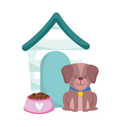 pet shop dog sitting with food and house animal vector image