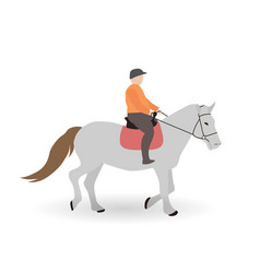 rider on gray horse vector image