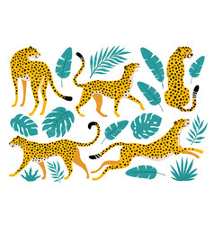set leopards and tropical leaves trendy vector image