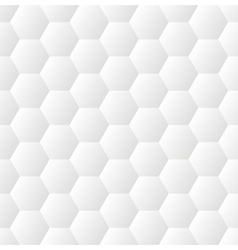 white pattern seamless vector image