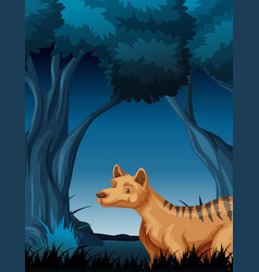 a hyena in dark forest vector image