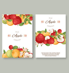 apples fruit collection set posters vector image