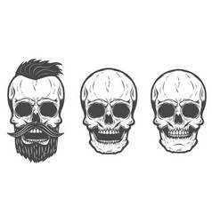 bearded skull isolated on white background vector image