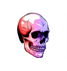dotted colorful halftone skull icon drawn vector image