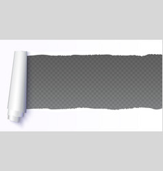 realistic white torn open paper with space for vector image