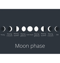 The phases of the moon vector