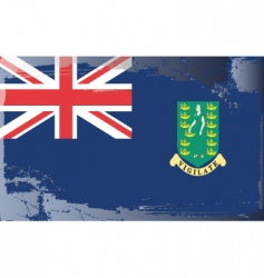 virgin island national flag vector image