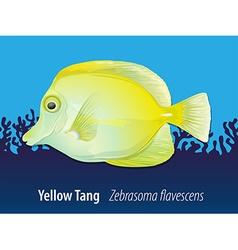 Yellow Tang swimming in the ocean vector