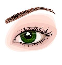 woman green beautiful eye vector image