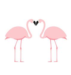 cartoon pink flamingo on white background vector image