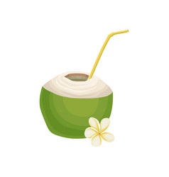 half of fresh green coconut with drinking straw vector image
