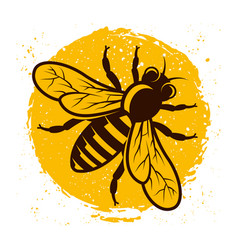 Honeybee on background with yellow grunge spot vector