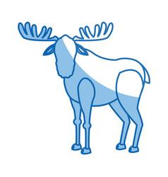 Moose antler animal natural wildlife image vector