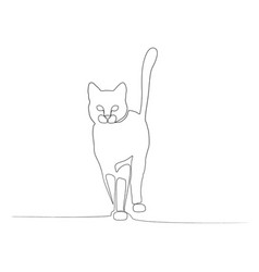 continuous one line front view cat vector image